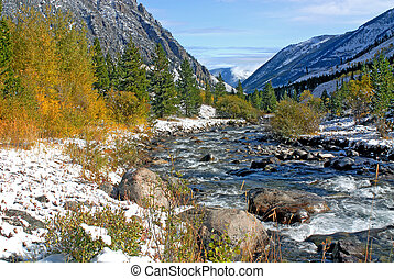 Rocky Mountain Strea - Stream in Beartooth Highway area,...