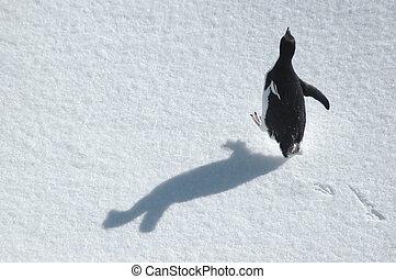 Funcionamiento, pingüino