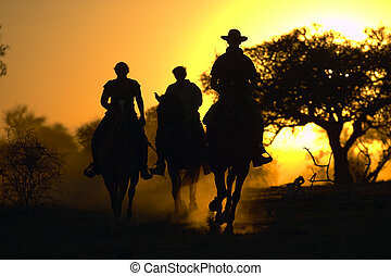 cow boys - tourists on a horse safari in africa