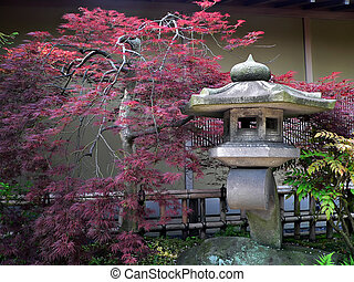 japanese garden - japanese lantern and red-maple tree in...