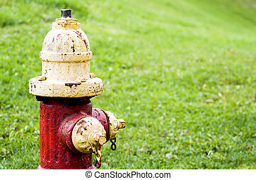 Red Fire Hydrant - A red fire hydrant on a grass background