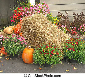 Autumn Mound - Autumn mound with hay, mums and pumpkins.