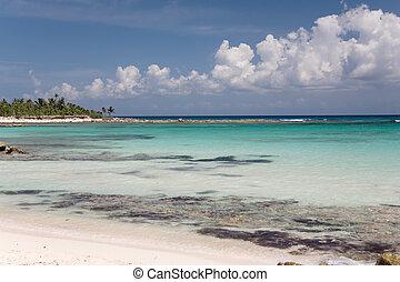 mexico ocean beach