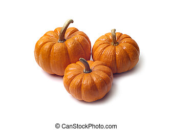 Isolated Pumpkins - Three pumpkins of various sizes isolated...