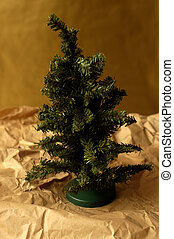 Undecorated Tree - An undecorated christmas tree just...