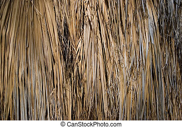 Bamboo Background - Dense Vertical Bamboo Background