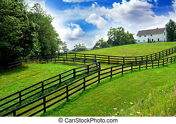 Rural landscape farmhouse - Rural landscape with lush green...