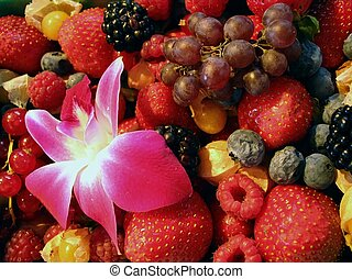 Berries and flower in farmers market - An assortment of...