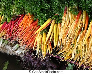 Multi-colored carrots at farmers\\\' market - Multi-colored...