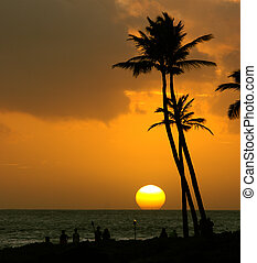 Tropical sunset - Tropical summer sunset over the ocean with...