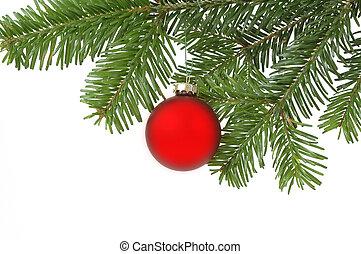 Chistmas ball - Christmas ball hanging in a christmas tree