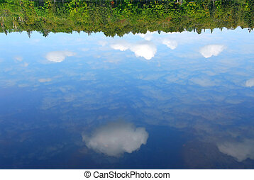Reflections water - Reflections of clouds and forest in a...