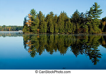 Lake with Pine Trees - Pine trees reflected in the calm...