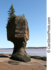 Bay of Fundy - Hopewell Rocks in the Bay of Funy