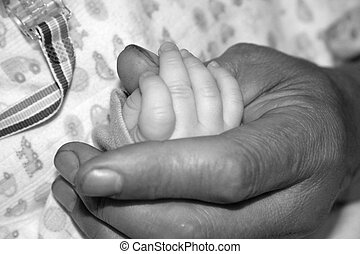 Father Holding Baby\\\'s Hand