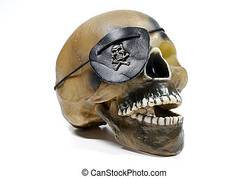 Pirates Skull - Photo of a Skull With a Pirate Patch
