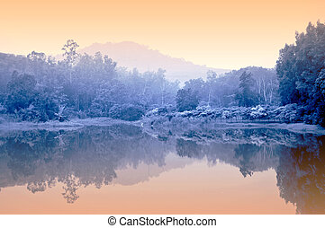 Misty pond - Early morning mist over a Thai lake