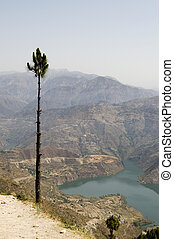 Pine over Ganga river - View at Ganga river and the...