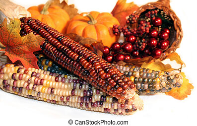Autumn Harvest - Signs of Autumn representing Thanksgiving...
