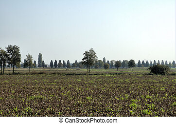 Country Side - Italian Country view