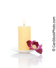 Candle and Orchid - Candle and orchid with Inverted...