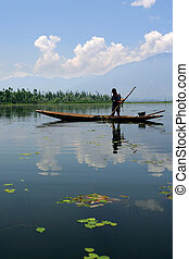 Boy working on lake - A young boy in Kashmir collecting...