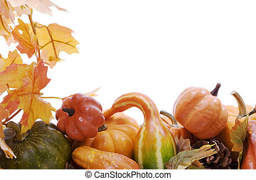 Pumpkins and gourds with fall leaves - Pumpkins on white...