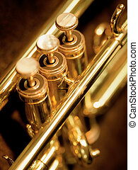 Trumpet valves - A shallow depth-of-field image of the...