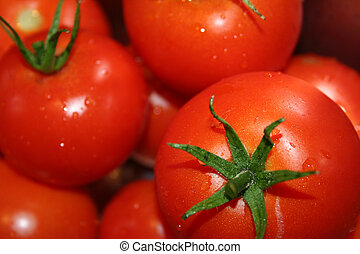 tomatoes - red tomatoes