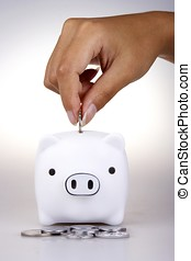 Piggy Bank - Piggy bank in white background