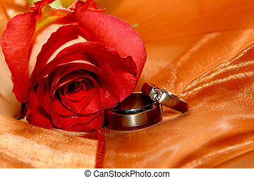 Ring Organza - Two wedding rings next to a red rose on...