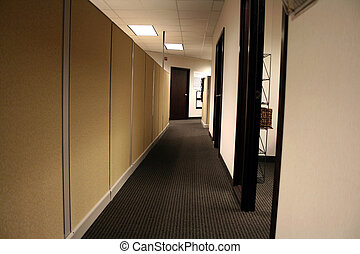 Office Hallway - Hallway of an Office with Cubicle Walls and...