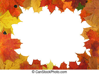 autumn maple frame