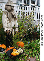 Scarecrow with pumpkins - Scarecrow in a garden with...