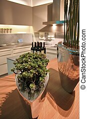 Kitchen - design of interior with plants in vase on table