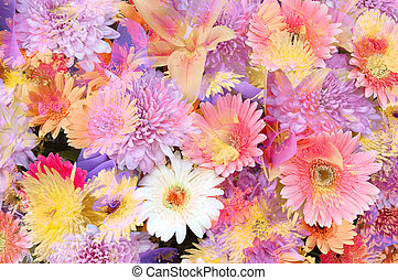 Flowery - Mixed flowers in a colorful abstract design