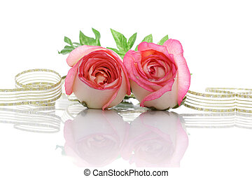 Roses and Ribbon - Roses and ribbon with inverted;...