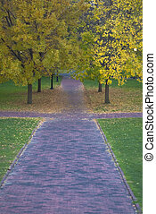 Follow the Yellow 2 - A red brick sidewalk draws you into a...