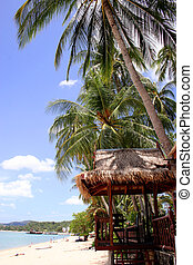 Tropical Beach Scene - Tropical beach with palm trees and...