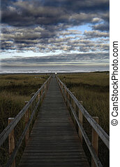path of life - a path to shore with stormy sky