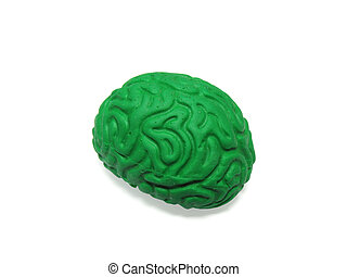 Green Brain Model on White Background - Green plastic model...