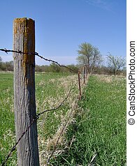 Barbed Wire Fenceline in rural NE