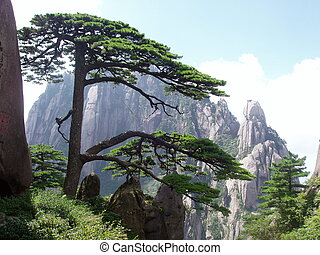 scenery of Hunagshan - Huangshan in China