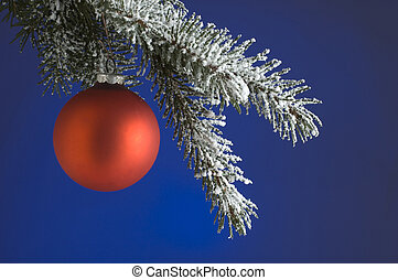 christmas - red christmas ball on branch on blue background