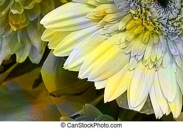 Quarter flower