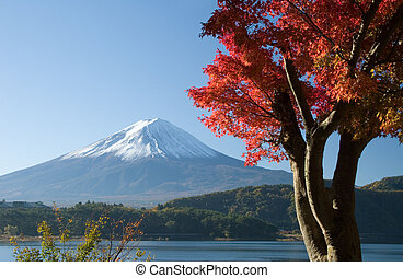 Mount Fuji in Fall VII - Lakeside view of Mount Fuji with...