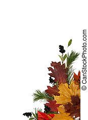 Colorful leaves - Autumn leaves natural frame on white...