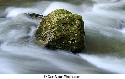 Milky water torrent - Long exposure image of a forest river...