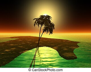 palm tree on water
