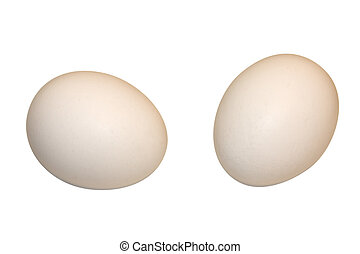 Two eggs - two eggs isolated on a white background